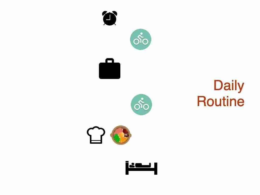 foxymonkey daily routine